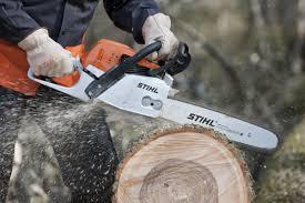 как заказать спил дерева